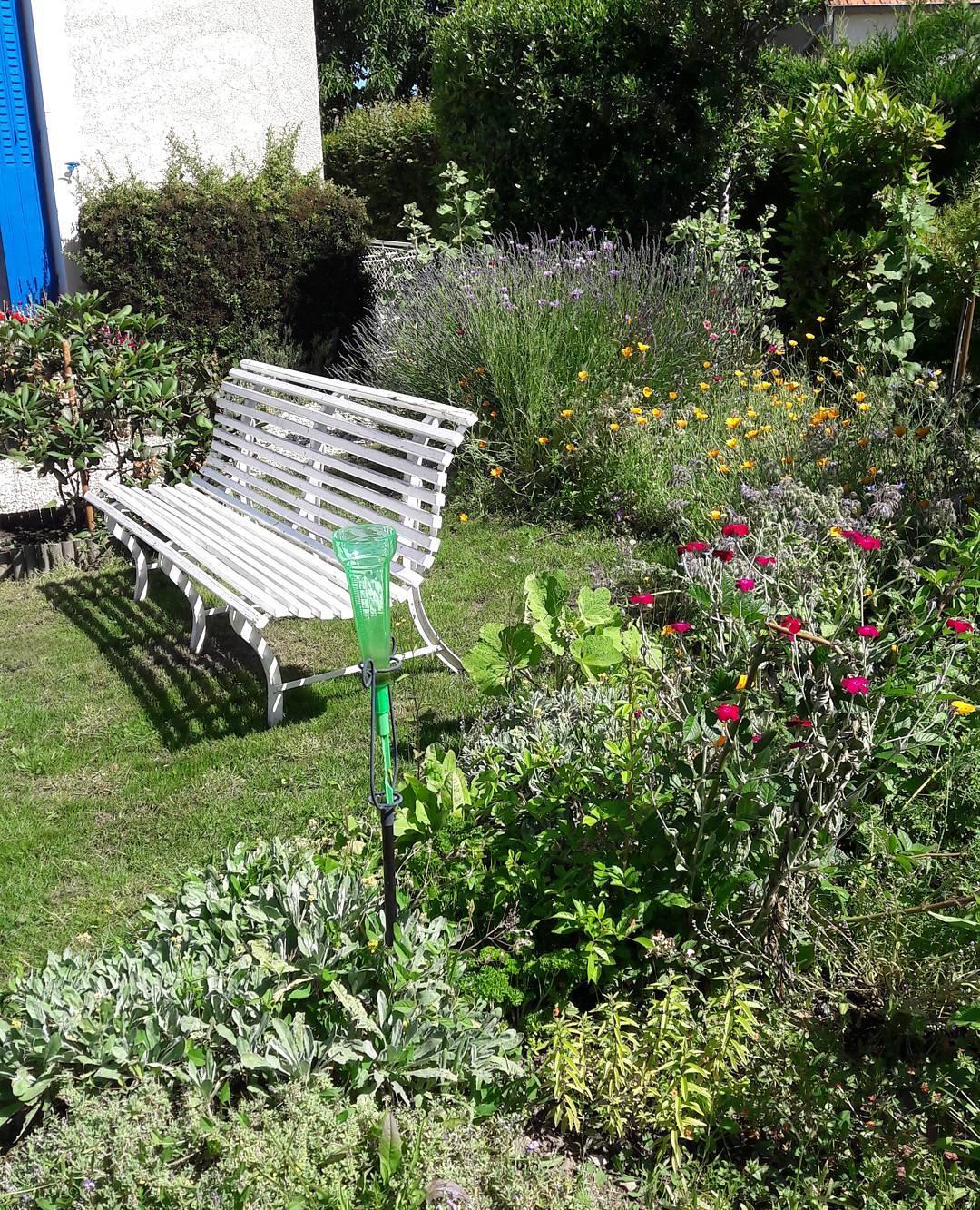 Être mis au banc #jardin #garden #nature #flowers #winter #green #fleurs #instagarden #fleur #detente #relax #repos #bonheur #weekend #zen #instamoment
