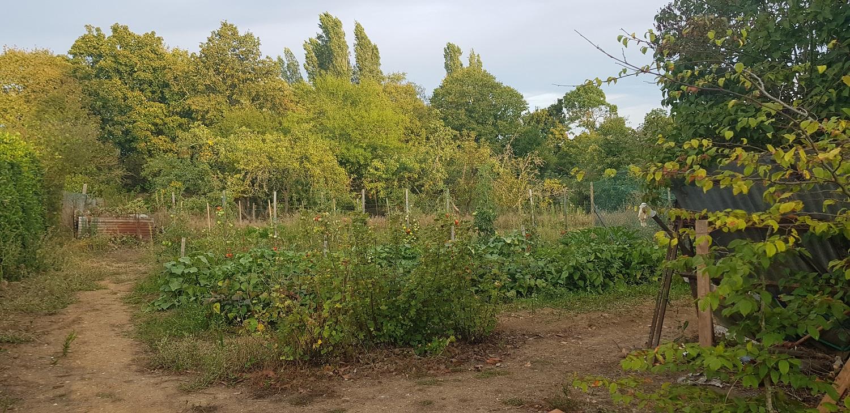 jardin-manum-mai_19_vue3